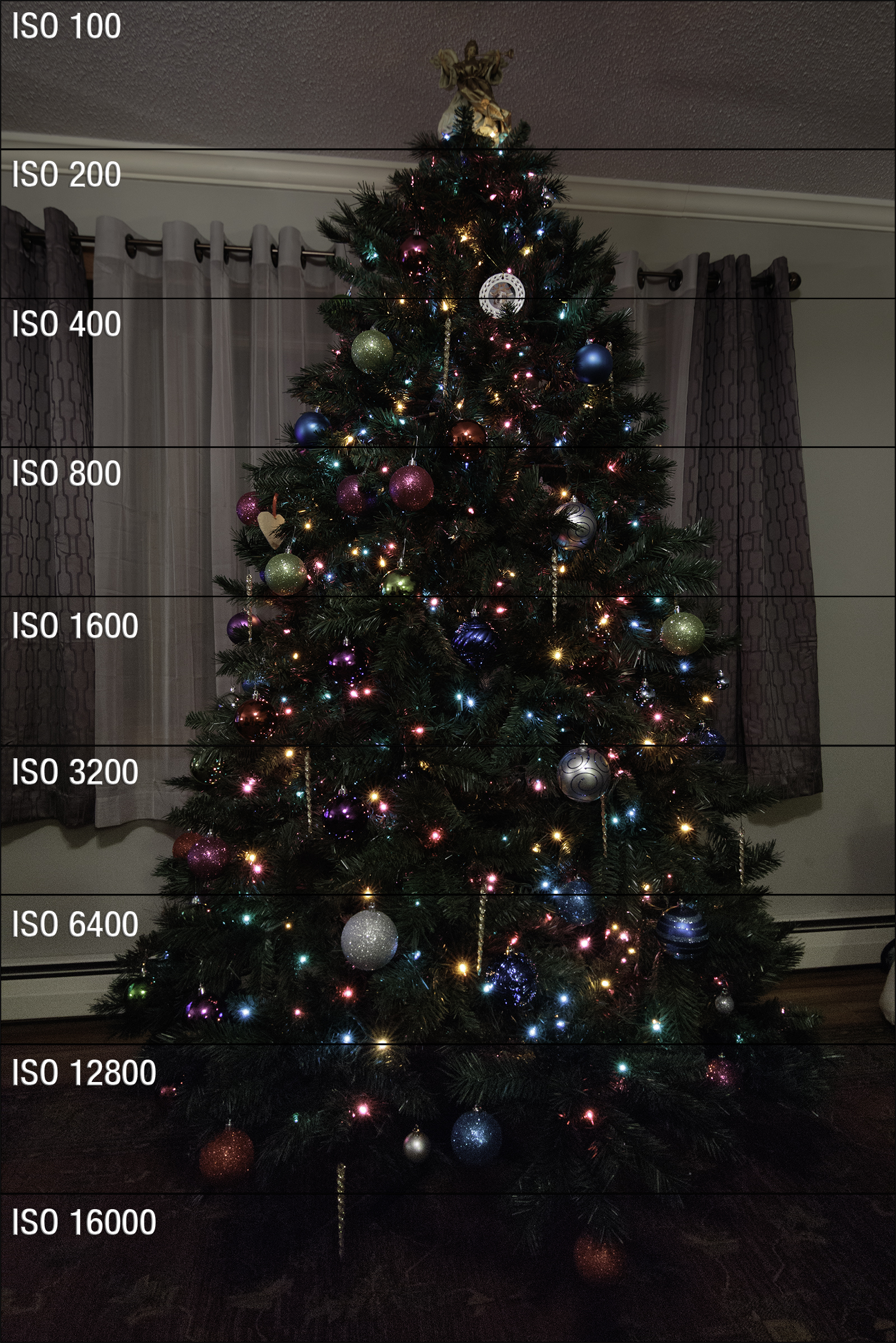 7D Mark II Christmas Tree ISO Test