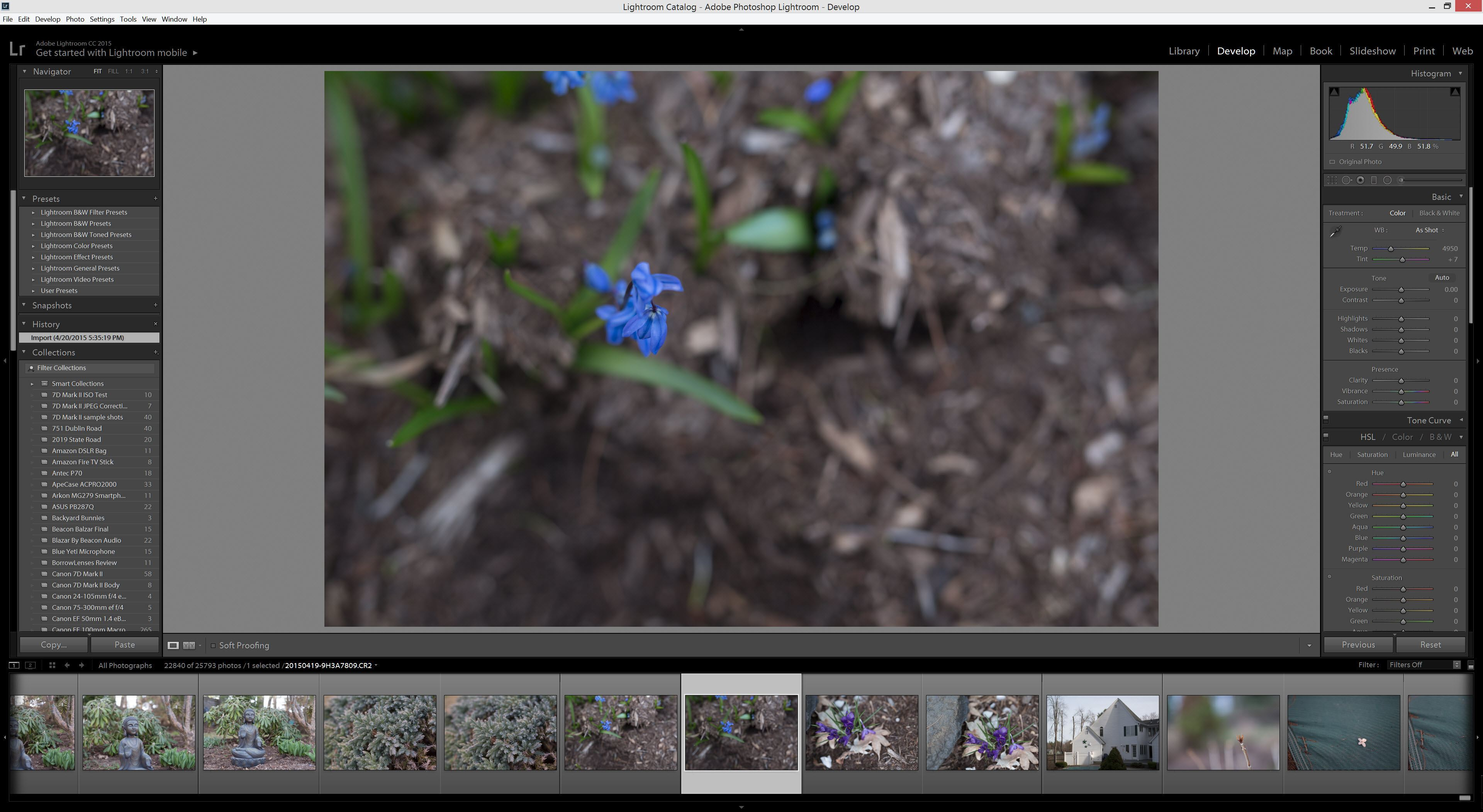 Lightroom 6 Develop Tab