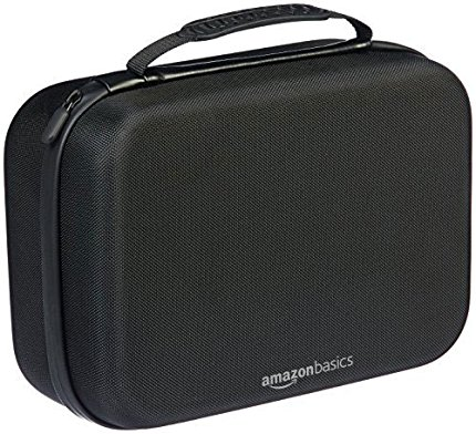 AmazonBasics Travel Storage Case For Switch