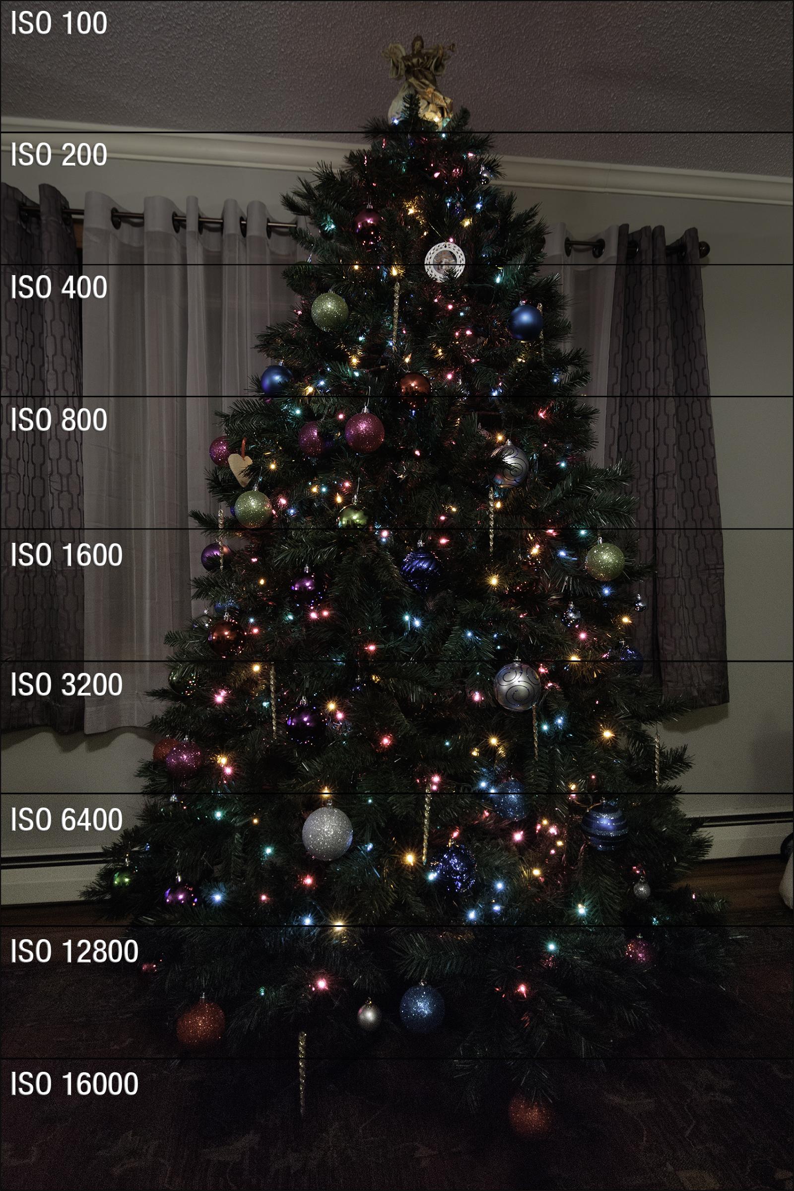 7D Mark II Christmas Tree ISO Test