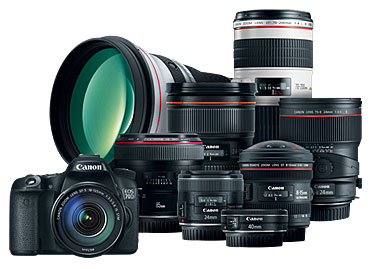 Canon 70D and 80D Lenses