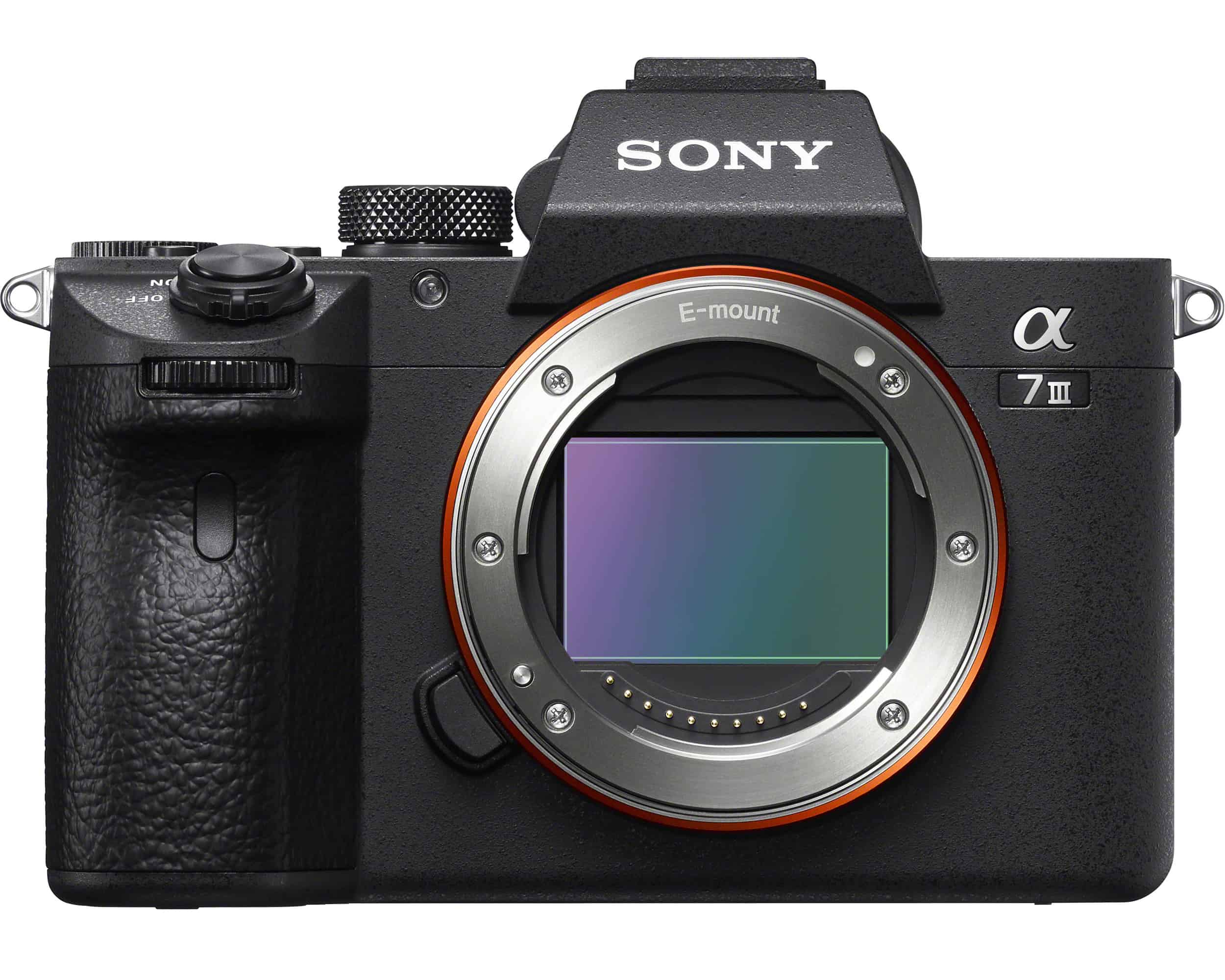 Sony a7III low light camera
